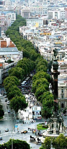 Hier is een hele mooie lang straat door Barcelona heen doordat er een rij bomen staat geeft het een mooi bijzonder effect.