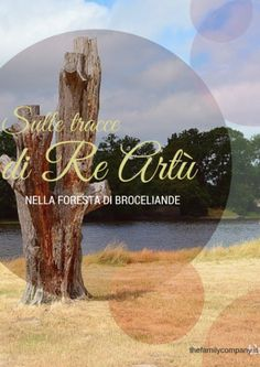 A must do itinerary if you visit #Brittany with kids: le Foret de Broceliande, where you will meet Merlin and King Arthur  #familytravel #france  [google translate]