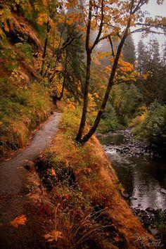 Eagle Creek Trail to Punchbowl Falls, Oregon via pinterest