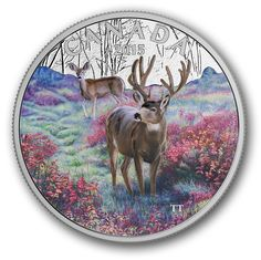 Fine Silver Coloured Coin – Misty Morning Mule Deer – Mintage: Mint Coins, Silver Coins, Canadian Coins, Valuable Coins, Deer Family, Coins For Sale, Mule Deer, Commemorative Coins, Majestic Animals