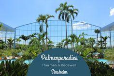 Palmenparadies Thermen & Badewelt Sinsheimhttp://www.naehfrosch.de/2017/04/naehfroschfamilie-im-palmenparadies-der-thermen-badewelt-sinsheim-kooperation/