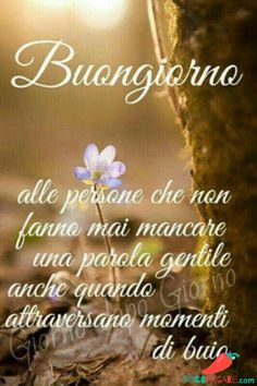 Immagini Belle Di Buongiorno - Pocopagare.com Good Night Prayer, Good Morning Good Night, Day For Night, Italian Night, Morning Quotes, Prayers, Genere, Emoticon, Smiley