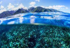 Visão de Teahupoo, a onda mais temida pelos surfistas no Circuito Mundial  no Taiti . Teahupoo, um monstro marítimo sobre corais pontiagudos, a 700m da costa no Pacífico Sul, Taiti (Foto: Divulgação/ASP)