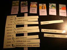 Jak pomoci dětem se specifickými poruchami učení | Děti | Mezizenami.cz Montessori, Language, Cards Against Humanity, Education, School, Adhd, Teaching Ideas, Literature, Dyslexia