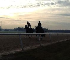 Sunrise at Tampa Bay Downs!