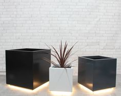 Cube Garden Planter With LED Lights by Precious Design, the perfect gift for Explore more unique gifts in our curated marketplace. Front Door Planters, Black Planters, Trough Planters, Herb Planters, Metal Planters, Planter Boxes, Hanging Planters, Driveway Lighting, Cactus Plant Pots