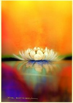 water lily image, watercolor by Kim from Handmade Cards by Kim