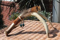 Deer Antler Decoration Deer Antler Shed Antler by WildWoodBarkArt