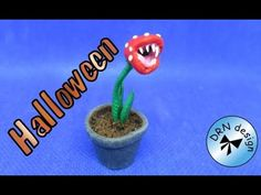 tutorial: miniature carnivorous plant