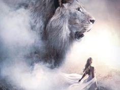 Lion Of Judah Jesus, Judah And The Lion, Lion And Lamb, Lion Images, Lion Pictures, Jesus Pictures, Pictures Images, Lions Photos, Lion Love