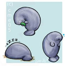 Ssuch a cute manatee! Bee Bee Manatee by ~cme on deviantART