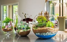 Glass Terrariums lo beautiful around your home and they're very easy and inexpensive to make, plus low maintenance.  Use Succulents or make miniature fairy gardens, add some river pebbles, you can even use faux plants if you want to have something with zero upkeep. We've added how to pick the right plants for your terrarium too and how to make a Terrarium from a glass Coffee Pot!