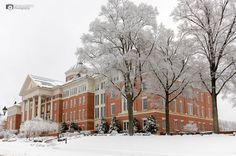 #snOMG #Kannapolis #snow #winter  WOW.. looks like we got us some snow in Kannapolis!!  ok.. well this was almost a year ago but we did get snow then.  maybe we will get some more soon??  :) Have a good Thursday all!!  Kannapolis Arts City of Kannapolis - Community News NC Research Campus
