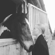 kate bosworth the ponybun