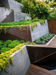 An Architect Sculpts Out a Tadao Ando-Inspired Backyard - Photo 4 of 4 - Board-formed concrete retaining walls double as ramps from the deck to the garden's highest point. Modern Landscape Design, Landscape Architecture Design, Landscape Walls, Modern Landscaping, Backyard Landscaping, Landscaping Ideas, Inexpensive Landscaping, Fashion Architecture, Contemporary Landscape