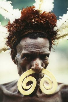 A coastal Asmat tribesman adorned with bird of paradise feathers and a nautilus shell that looks  like a boar tusk, Papua, Indonesia.