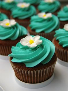 Chocolate cupcakes + bright icing = pretty color combo! Flowers bought from cake decorating store
