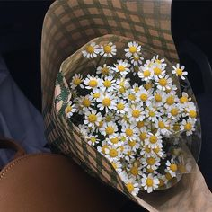 Flowers to you all rg Flower Aesthetic, Aesthetic Pictures, My Flower, Planting Flowers, Beautiful Flowers, Cute, Instagram Posts, Aesthetics, Daisies Bouquet