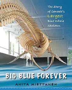 (Fitzhenry & Whiteside) BIG BLUE FOREVER is inspired by the true story of how a blue whale skeleton found on a remote beach in PEI was shipped cross country and reassembled for permanent display at the Beaty Biodiversity Museum. Ocean Day, Best Authors, Oceans Of The World, Blue Whale, True Stories, Big, Environmental Science, Display, Reading