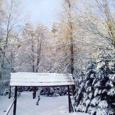 #winter #nature #snow #zima #natura #śnieg #snieg