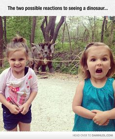 The Two Possible Reactions To Seeing A Dinosaur... - Damn! LOL