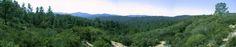 Panorama photograph of Big Basin Redwoods State Park