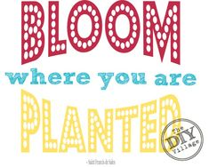 Bloom where you are planted FREE printable - The DIY Village