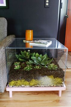 Terrarium making is a rewarding hobby that combines art and nature. You can make a nice terrarium in an hour and then enjoy ca… Decor Terrarium, Terrariums Diy, Large Terrarium, Succulent Terrarium, Fish Tank Terrarium, Diy Coffee Table, Diy Table, Diy Side Tables, Coffee Table Terrarium