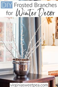 Learn how to use branches from your yard to make frosted branches to use for winter decor. This simple project is inexpensive and easy to make. Sparkling, icy branches look great in a vase, used in a wreath, or in a floral arrangement. Diy Home Gym, Diy Home Decor, Painting Shutters, Winter Home Decor, Holiday Decor, White Spray Paint, Heart Wall Art, Painted Cottage, Floral Foam