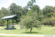 VISIT NORTH OAK PARK - North Oak Park is surrounded by trees and during the fall can be extremely relaxing. There is a walking track for exercise, softball fields, a playground, water playground for kids and swings for the child in all of us.