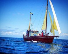 La nostra Miranda! #cilentoavela#marinadicamerota#scario#palinuro#acciaroli#maratea#cilento#campania#charter#vela#mare#natura#sail#sailing#sailor#LikeForLike#picoftheday#landscape#discovery#instapic#instasea#instanature#travel#viaggi#sailboat#barcavela#postcard by cilentoavela