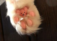 Bear on a kitty paw.