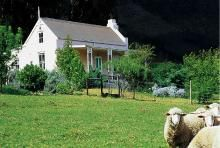 franschoek - Bird Cottage | Franschhoek self catering weekend getaway accommodation, Western Cape | Budget-Getaways South Africa