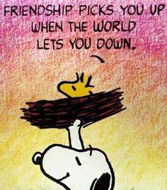 Amizade te leva para cima,quando o mundo deixa para baixo.