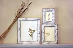 DIY pressed flower frames