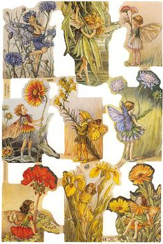 Flower fairy scraps from England