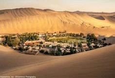 """Huacachina, un oasis en medio del desierto de Ica.  El único oasis natural que existe en el Perú se encuentra en el departamento de Ica, en medio de las arenas blancas del desierto de la costa de nuestro país. Considerado el """"Oasis de América"""" pues sería el único oasis del continente americano, ver otro parecido tendría que viajar al África."""
