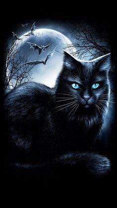53 Super Ideas For Wallpaper Fofos Gatos Pretos Wallpaper Gatos, Cat Wallpaper, Beautiful Dark Art, Beautiful Cats, Evvi Art, Gothic Fantasy Art, Witch Cat, Photo Chat, Warrior Cats