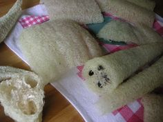 Greenish Thumb: How to make luffa gourd sponges - have the seeds, now if they would just GROW!