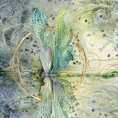 Shadowscapes - Stephanie Pui-Mun Law