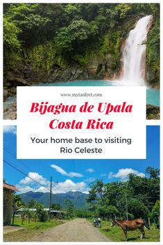 Bijagua is a charming small town in the mountains of Costa Rica and is the gateway to Rio Celeste, the sky blue river. Click to read more about visiting this rural mountain village: https://mytanfeet.com/cities-costa-rica/bijagua-costa-rica-rio-celeste/  Costa Rica | Costa Rica travel blog | Costa Rica travel tips | Rio Celeste