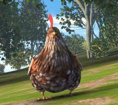 RTTE | Chicken ♥