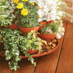 Algreen Indoor Outdoor Herb Planter with 3 Planting Trays - Garden Planters at Hayneedle