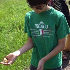 Nephew Roan finds an Eastern Swallowtail