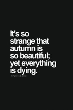 But is it strange? Beauty is in everything, even death, for death makes way to birth.....nature has so much to teach us if we just took the time to notice and listen