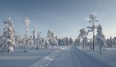 Lapland Retreat – Kind Of Nordic Skiing, Lapland Finland, North Country, Cross Country Skiing, Outdoor, Finland, The Great Outdoors, Outdoors