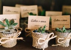 Succulent Wedding Favors Diy Flower New Ideas Vintage Wedding Favors, Diy Wedding Favors, Diy Wedding Decorations, Wedding Souvenir, Succulent Wedding Favors, Diy Centerpieces, Baby Shower, Shower Party, Bridal Shower