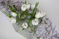 Tulips Honeymoon  Jarvenpaan Kukkatalo