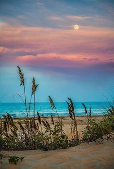 *🇺🇸 The Moon at sunset (South Padre Island, Texas) by Micah Goff 🌅 Types Of Photography, Landscape Photography, Nature Photography, Photography Ideas, Beach Sunset Photography, Travel Photography, Beach Pictures, Nature Pictures, Beautiful Pictures