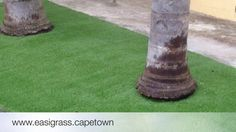 5 Important Elements when Installing Artificial Grass Artificial Grass Installation, Lawn, Landscaping, Garden, Plants, Garten, Lawn And Garden, Yard Landscaping, Gardens
